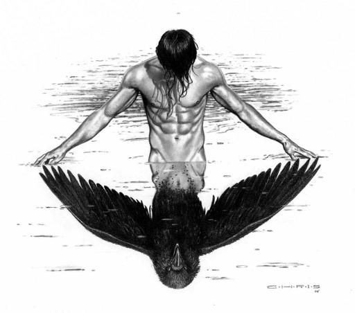 raven_by_chris_08