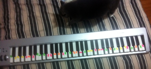 17edo_piano