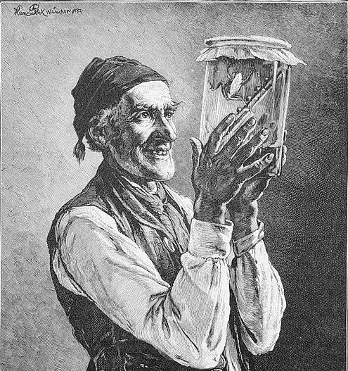 517px-Die_Gartenlaube_(1887)_b_385crop