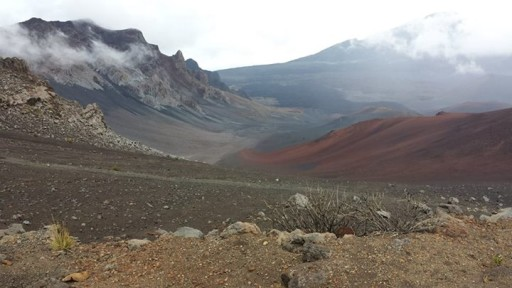 4/1/14 — at Haleakala National Park by Paul Erlich